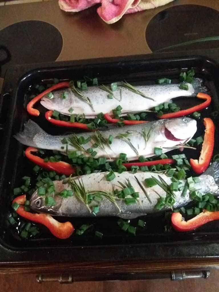 forel2